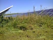 Manutenzione del verde impianti Fotovoltaici, Sfalcio erba impianti fotovoltaici, Gestione impianti fotovoltaici Marche, Piantumazione siepi impianti fotovoltaici Marche